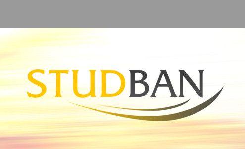box-studban(1)